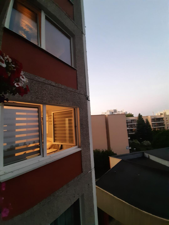 resized 20210618 2104041 ZAMOŚĆ: Strażacy uratowali uwięzionego jerzyka.