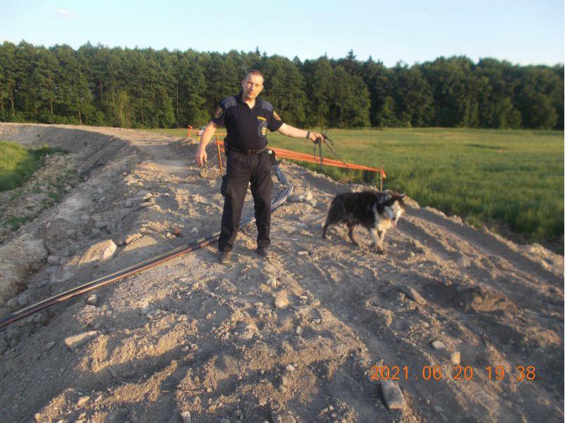 zrzut ekranu 2021 06 21 o 095055 ZAMOŚĆ: Strażnicy miejscy uratowali psa przed niechybną śmiercią