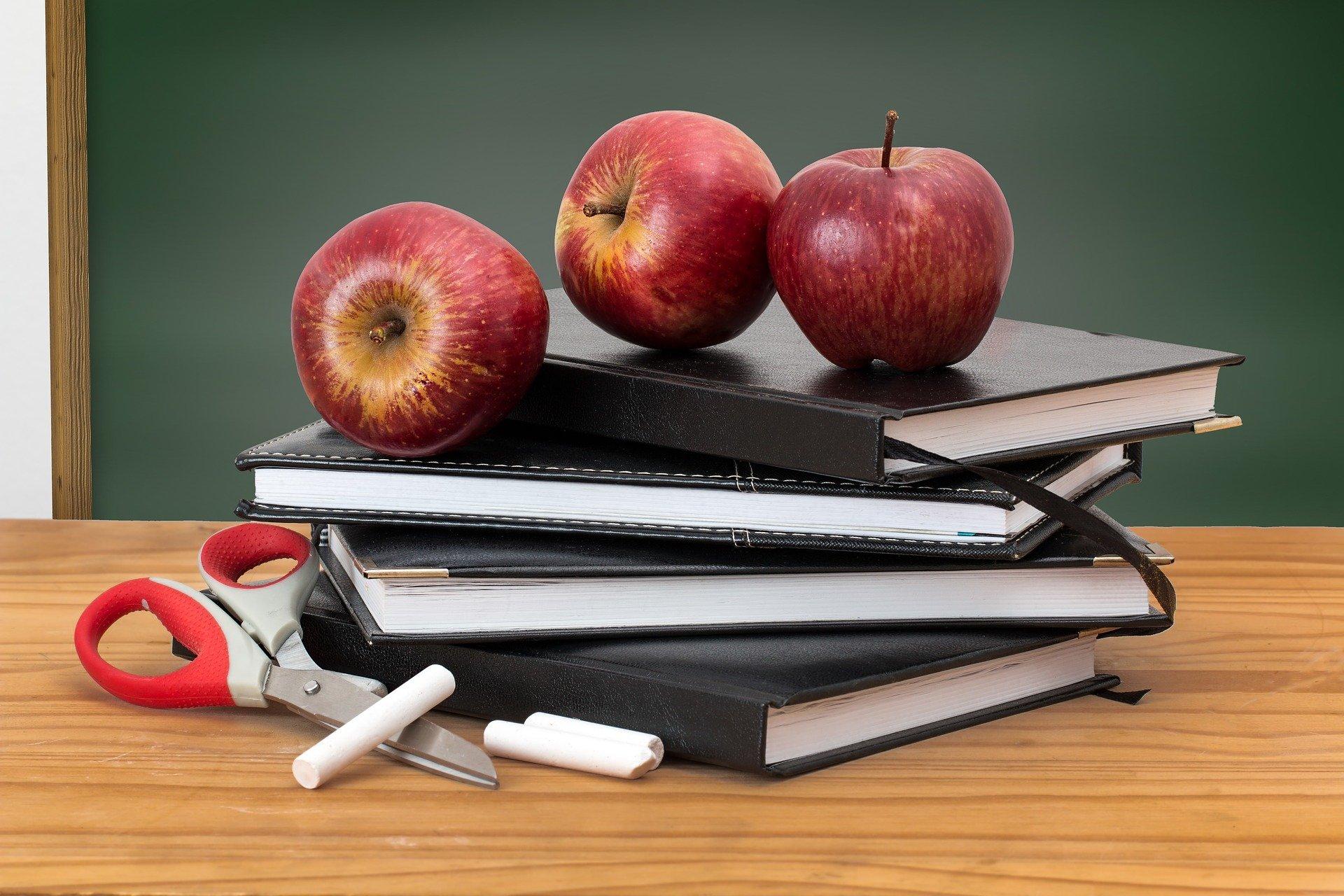 school 2276269 1920 ZAMOŚĆ: Trwa nabór wniosków na stypendia szkolne 2021/2022