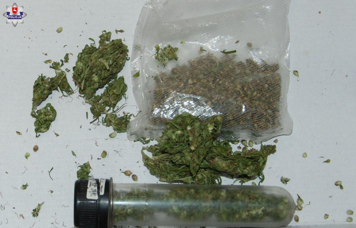 68 191843 Marihuanę schował w bieliźnie